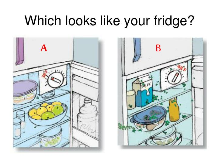 Which looks like your fridge
