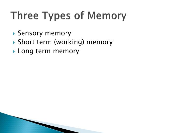 Three Types of Memory