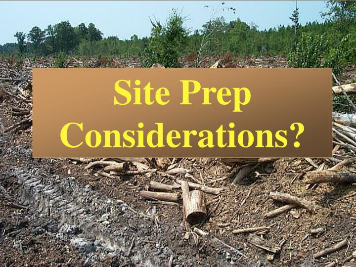 Site Prep Considerations?