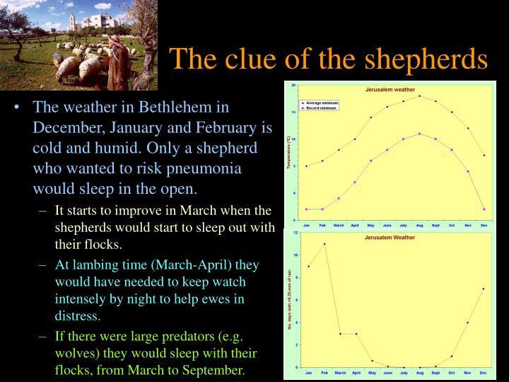 The clue of the shepherds