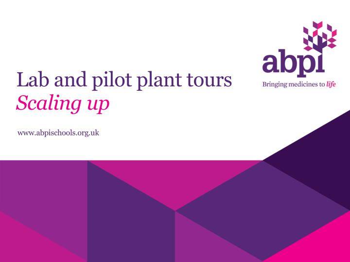 Lab and pilot plant tours scaling up