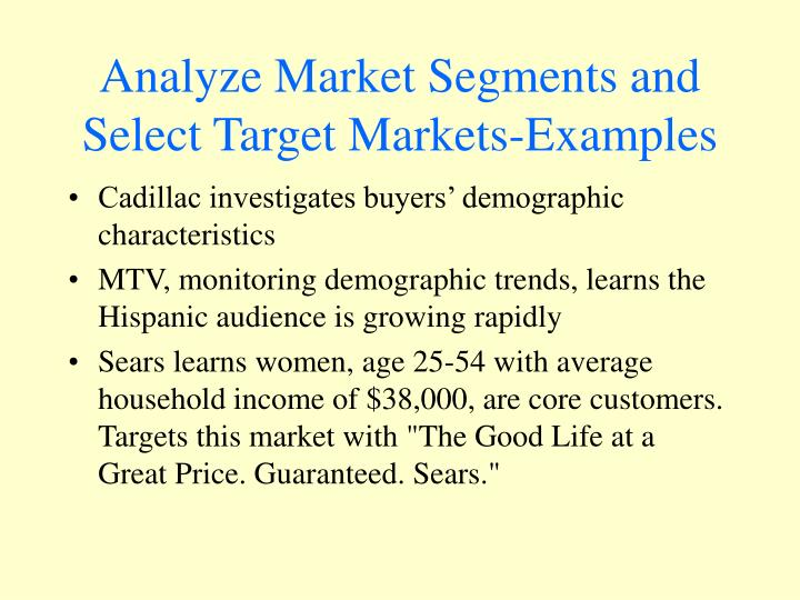 Analyze Market Segments and Select Target Markets-Examples