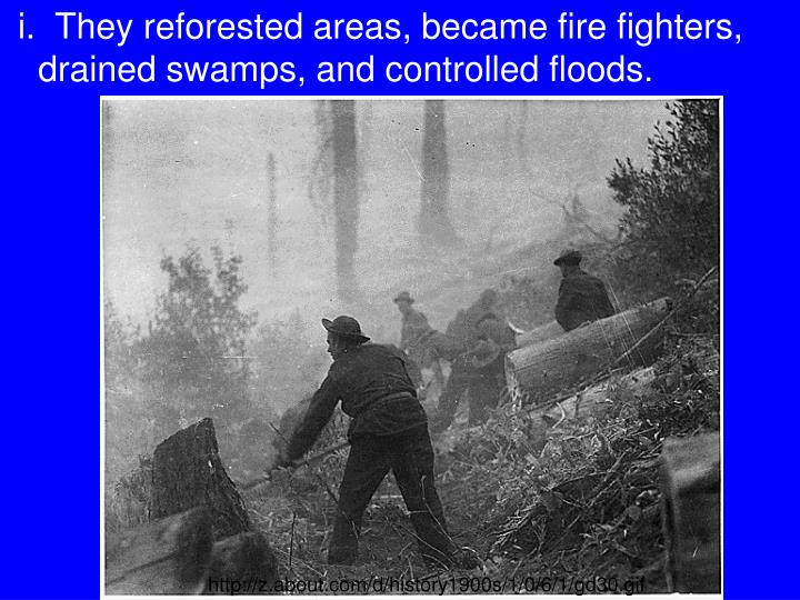 i.  They reforested areas, became fire fighters, drained swamps, and controlled floods.