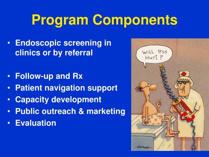 Program Components