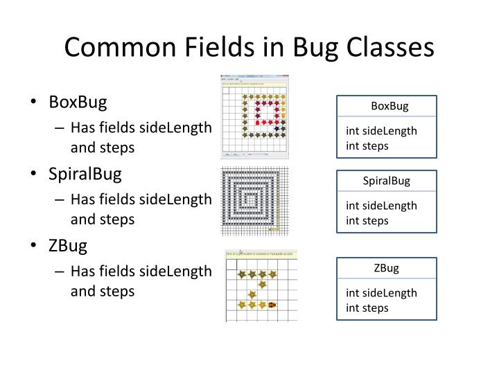 Common fields in bug classes