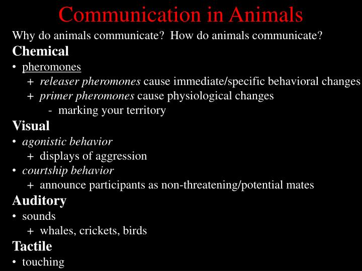 Communication in Animals