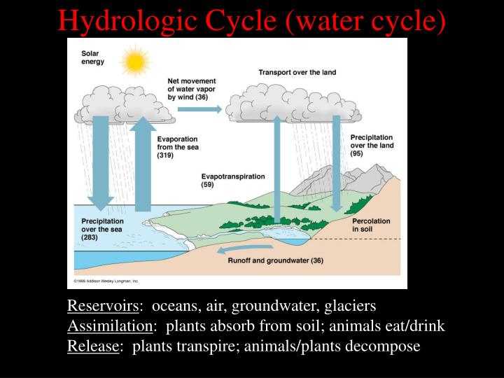 Hydrologic Cycle (water cycle)