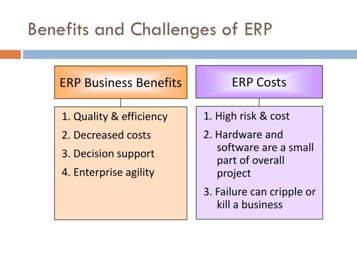 ERP Costs