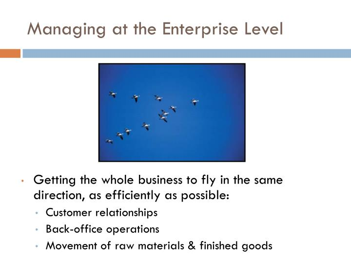 Managing at the Enterprise Level