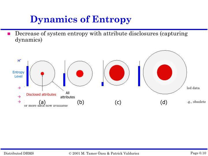 Dynamics of Entropy