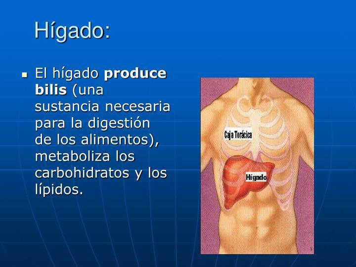 Hígado: