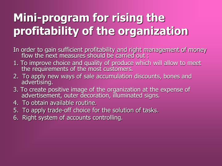 Mini-program for rising the profitability of the organization