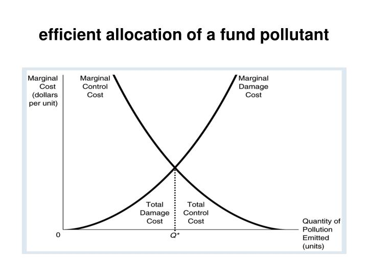 efficient allocation of a fund pollutant