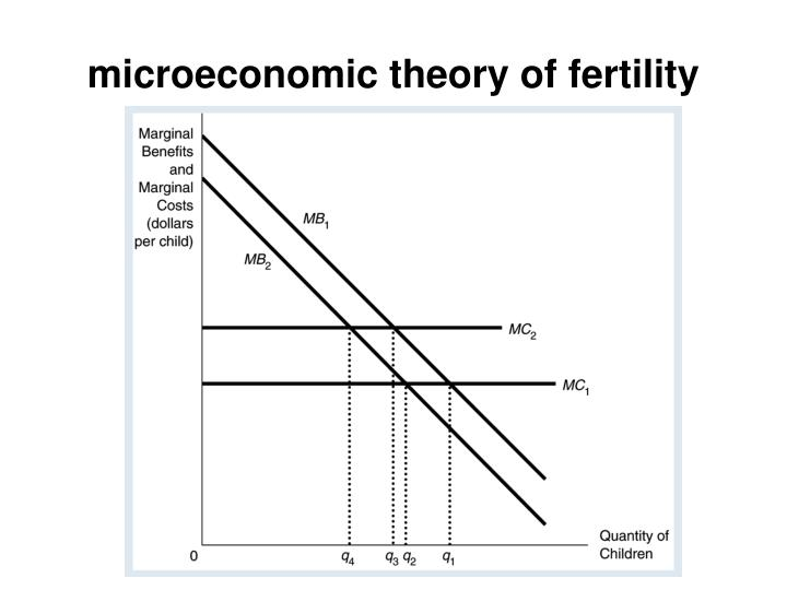 microeconomic theory of fertility