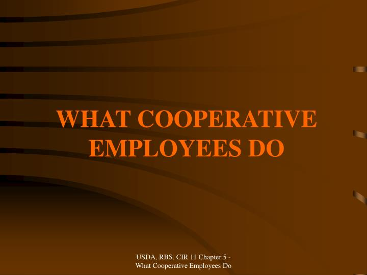 What cooperative employees do