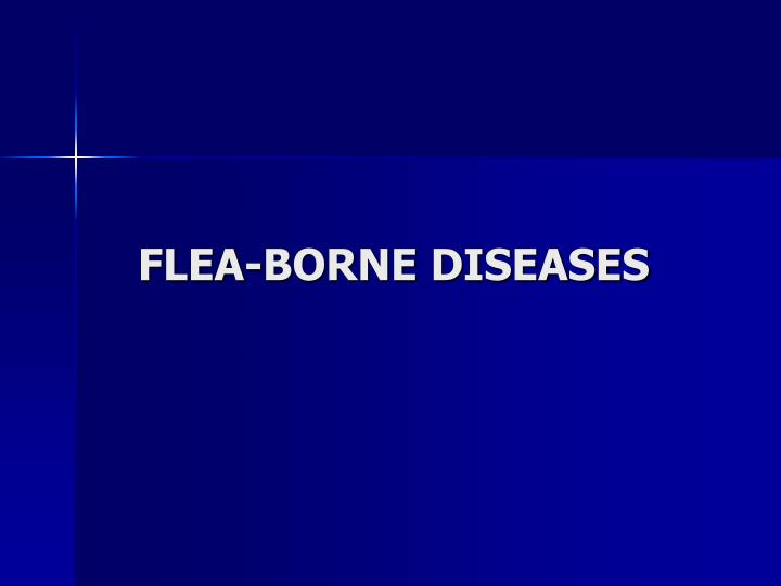 FLEA-BORNE DISEASES