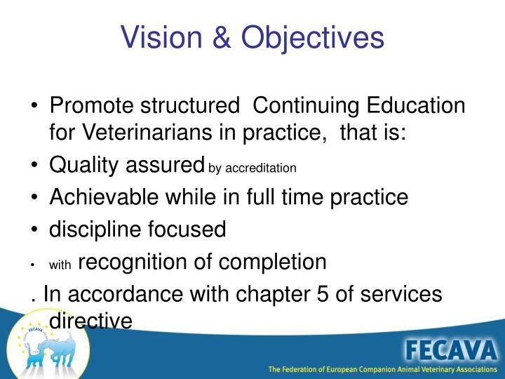 Vision objectives