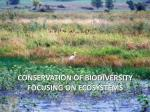 conservation of biodiversity focusing on ecosystems