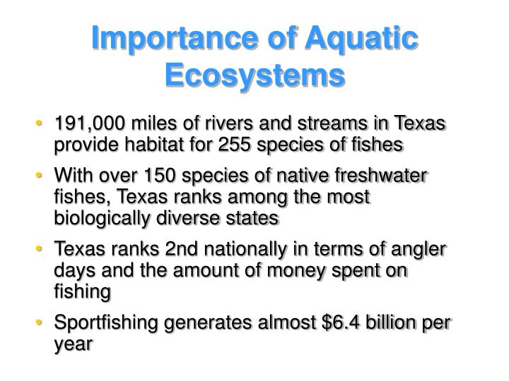 Importance of Aquatic Ecosystems