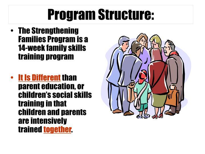 Program Structure: