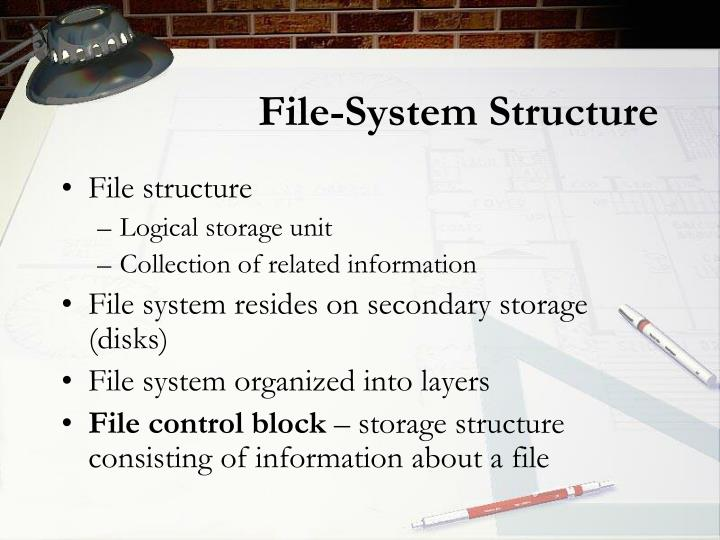 File-System Structure