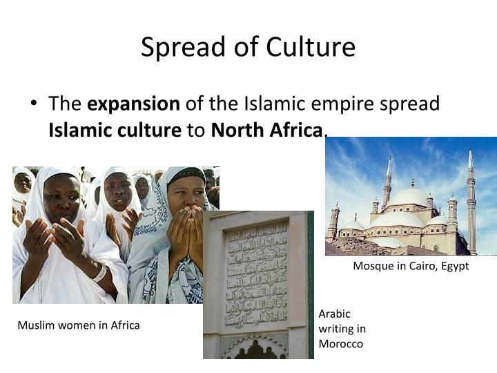 a discussion on the spread of the islamic civilization Discuss the spread of islam and identify how the caliphs maintained authority  over  the expansion of the arab empire in the years following the prophet.