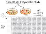 case study 1 synthetic study1