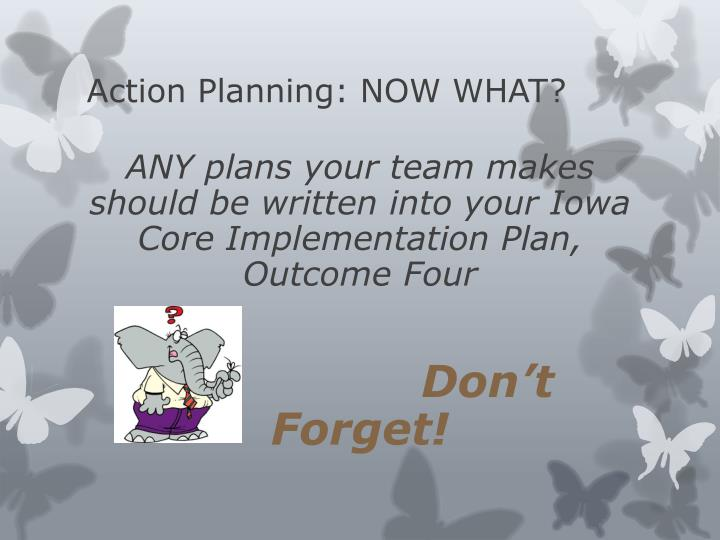 Action Planning: NOW WHAT?
