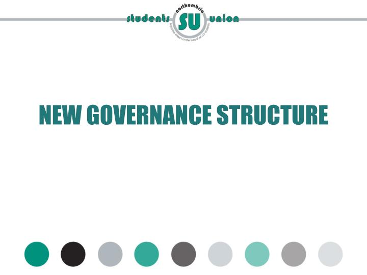 NEW GOVERNANCE STRUCTURE