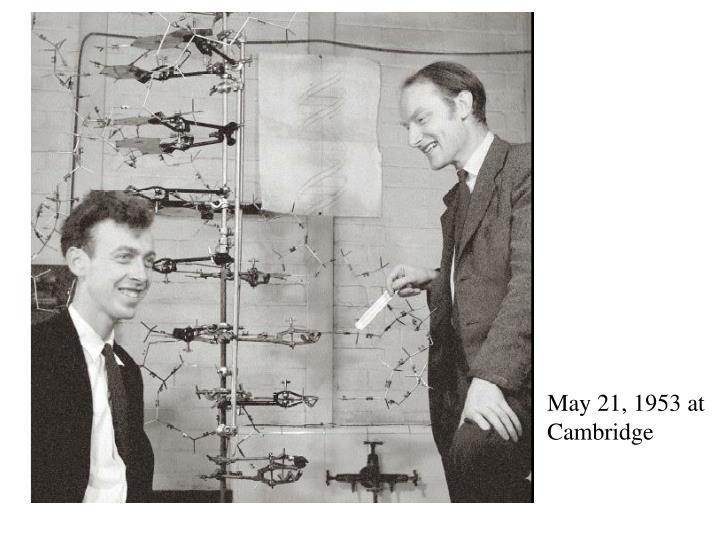 May 21, 1953 at Cambridge