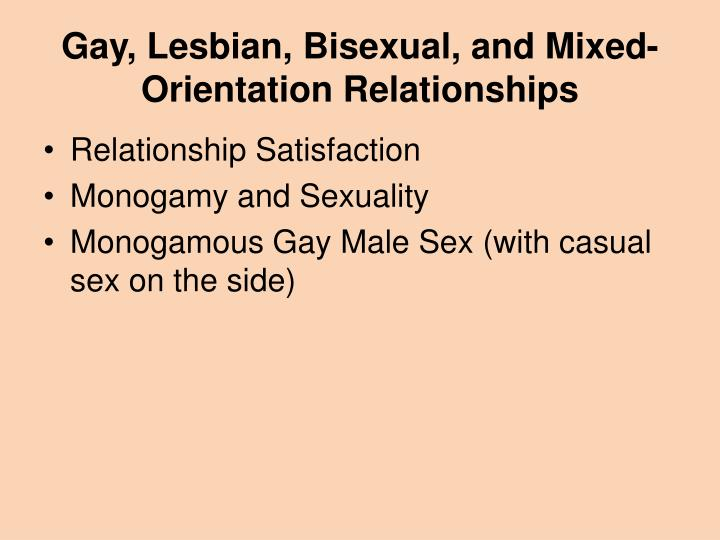 Gay, Lesbian, Bisexual, and Mixed-Orientation Relationships