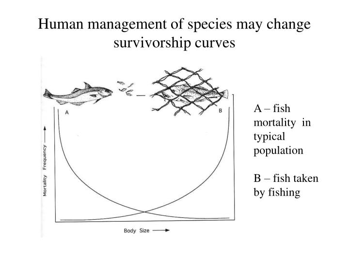 Human management of species may change survivorship curves