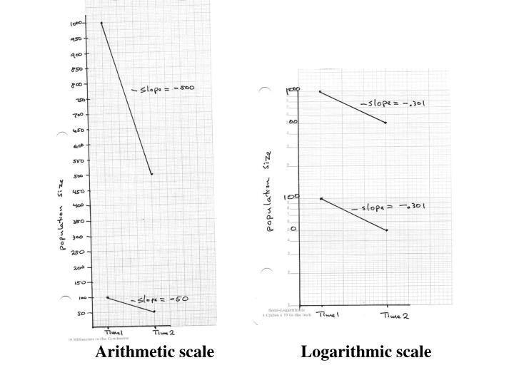 Arithmetic scale