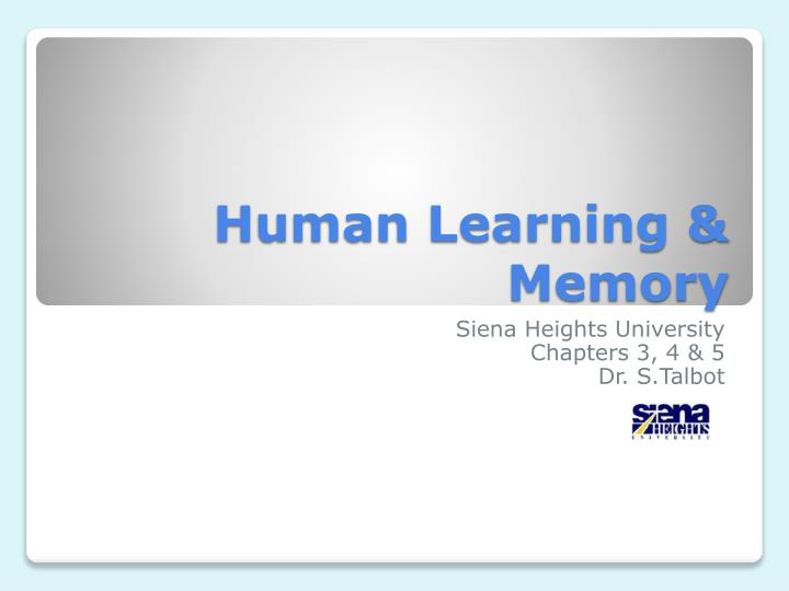 Human learning memory