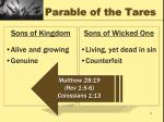 parable of the tares1