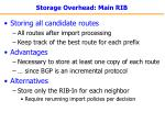 storage overhead main rib