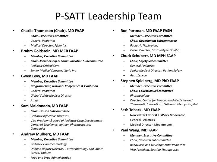 P satt leadership team