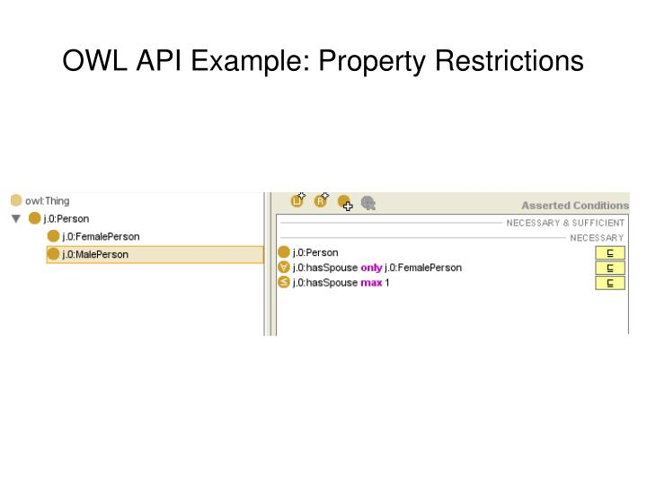 OWL API Example: Property Restrictions