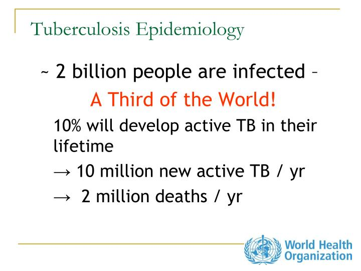 Tuberculosis epidemiology