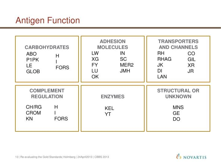Antigen Function