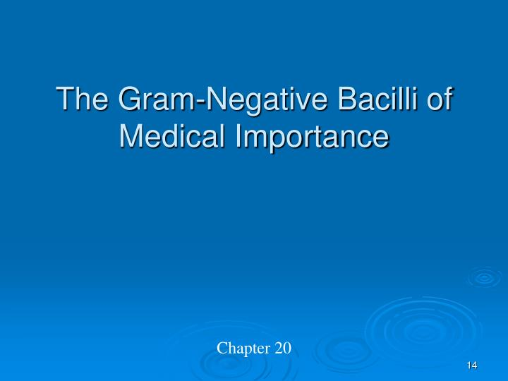 The Gram-Negative Bacilli of Medical Importance