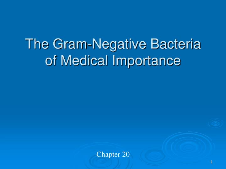 The gram negative bacteria of medical importance