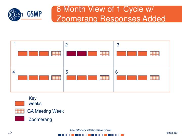 6 Month View of 1 Cycle w/ Zoomerang Responses Added