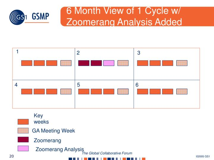 6 Month View of 1 Cycle w/ Zoomerang Analysis Added