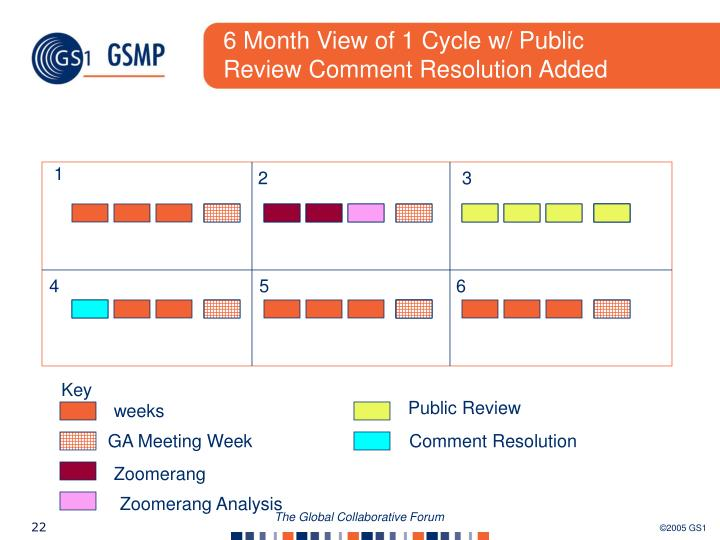 6 Month View of 1 Cycle w/ Public Review Comment Resolution Added