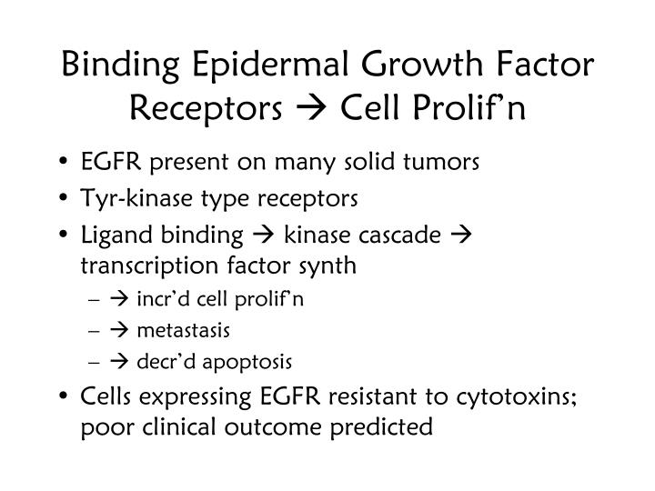 Binding Epidermal Growth Factor Receptors