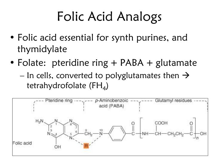 Folic Acid Analogs