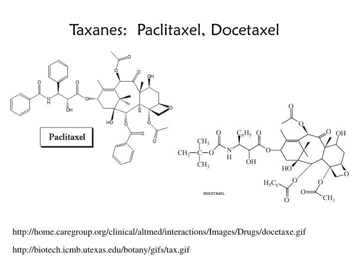 Taxanes:  Paclitaxel, Docetaxel
