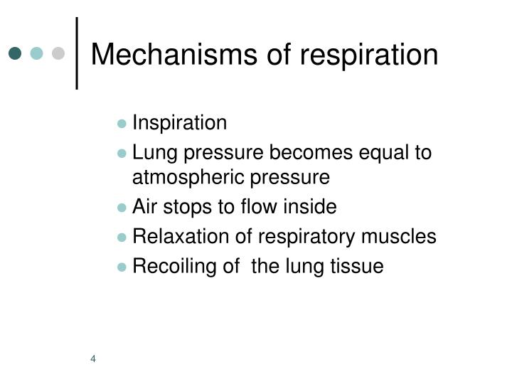 Mechanisms of respiration
