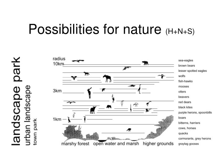 Possibilities for nature